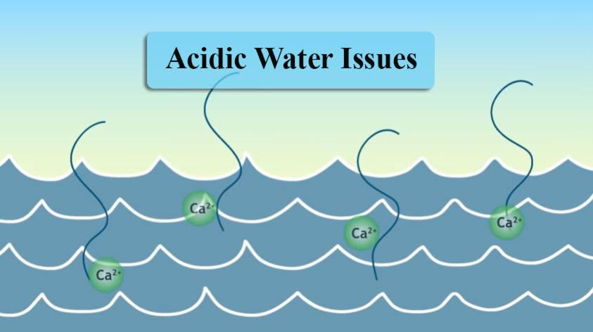 Acidic water issues